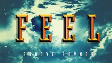 Groove Govnor – Feel (Original Mix)