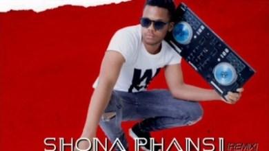 Qwabe Brothers & Dj Floyd – Shona Phansi Remix Ft. Dj Sandz Wae, Dj Speaker & Dlala