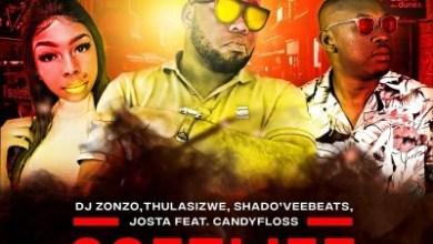 DJ Zonzo, Thulasizwe, Shado'veebeats & Josta – Soft Life ft. CandyFloss