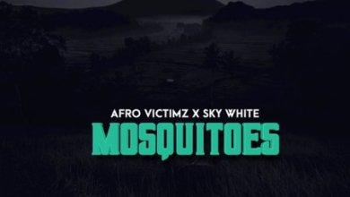 Afro Victimz & Sky White – Mosquitoes (Original Mix)