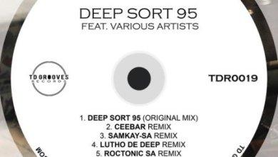 Deep Sort 95 – No World (Original Mix)