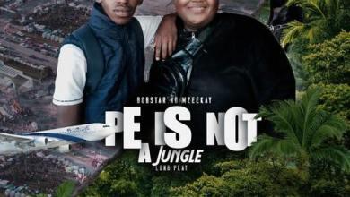 Bobstar no Mzeekay – PE Is Not A Jungle (Official Soundtrack)