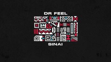 Dr Feel Sinai (Original Mix) Mp3 Download