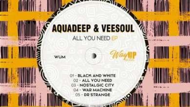 Aquadeep & Veesoul – All You Need EP Zip Download