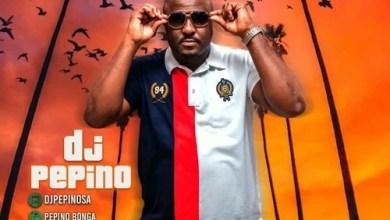 DJ Pepino - No Fake Lyf Mix Vol 2