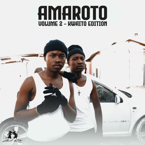 Reece Madlisa & Zuma ft. Lady Du & Busta 929 – Manyonyoba Mp3 Download