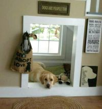 Pet Home Decor Hacks That Dog & Cat Owners Will Love