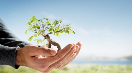 sustentabilidade-individual-7