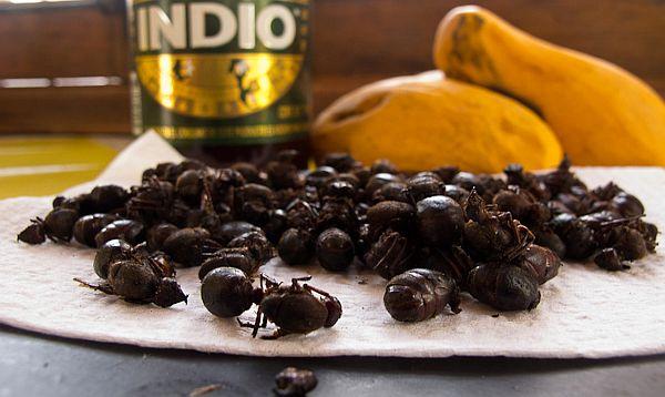 Mexicos Squishy Crunchy Ancestral Bug Snacks