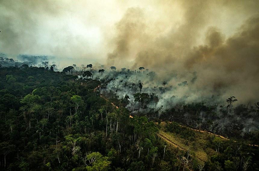 Mudanças climáticas aumentarão temperaturas na Amazônia