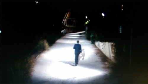 """That's the A-frame where the guards are at the end of the path, like in """"Kid Charlemagne""""."""