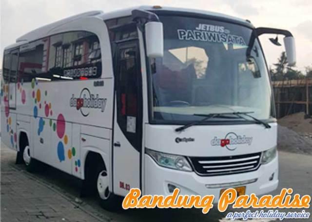 bus-medium-31-seat