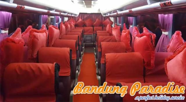 interior-bus-medium-31-seat