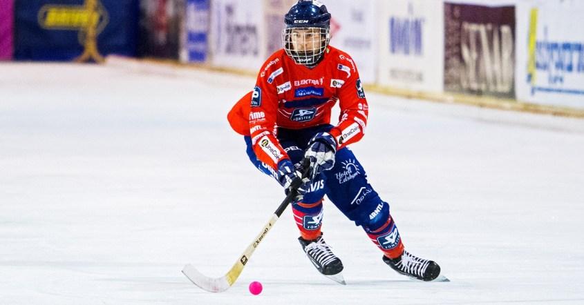 Joakim Svensk, Edsbyn, William Arvidsson, fyra matcher, stängs av