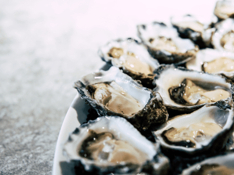 Oysters from Carrington Lough Ireland