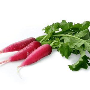 Red radish with leaves