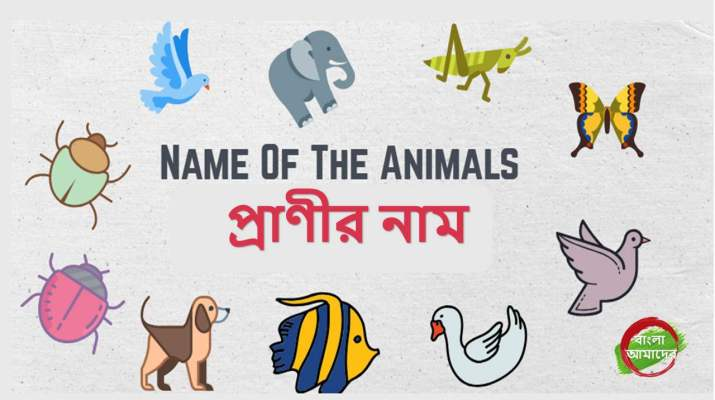 Bengali names - animals name list in Bengali -Bangla Amader