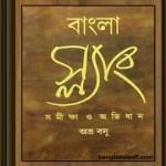 Bangla Slang Samiksha O Abhidhan ebook