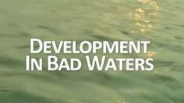 development-in-bad-waters-cover
