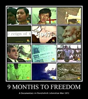 Nine Months to Freedom cover