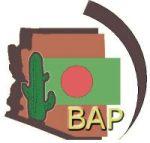 Bangladesh Association of Phoenix