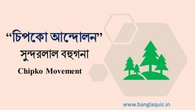 চিপকো আন্দোলন - সুন্দরলাল বহুগনা