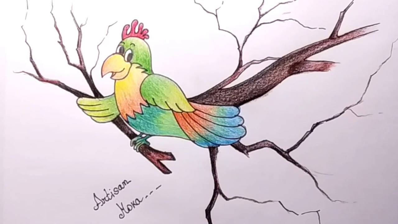 How To Draw A Bird For Kids Bird Drawing Lesson Step By Step Cartoon Cockatoo Bangla Viral