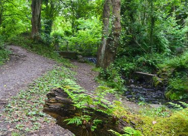 Stricklands Glen Bangor Coastal Path in North Down Northern Ireland