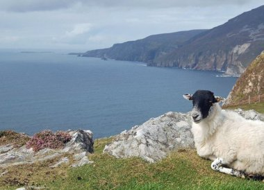 Slieve League Cliffs, Wild Atlantic Way Road Trip West Coast of Ireland