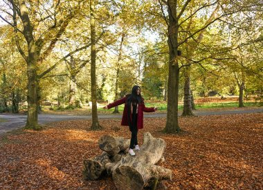 Autumn ib Castle Park, Bangor Castle Walled Garden Bangor N Ireland