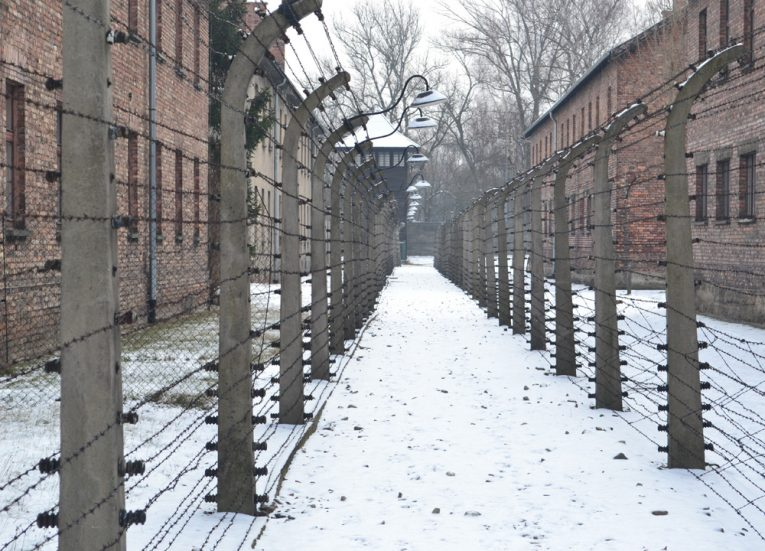 Barrier-Fences-in-Auschwitz-Poland-Winter-Road-Trip-in-Europe-Poland