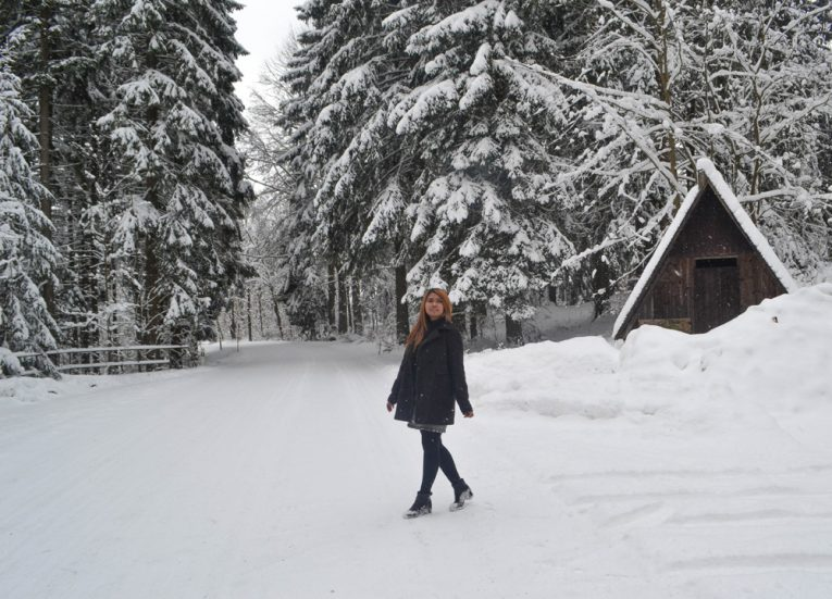 Driving-in-Snow-Europe Road Trip in Winter Travel Itinerary
