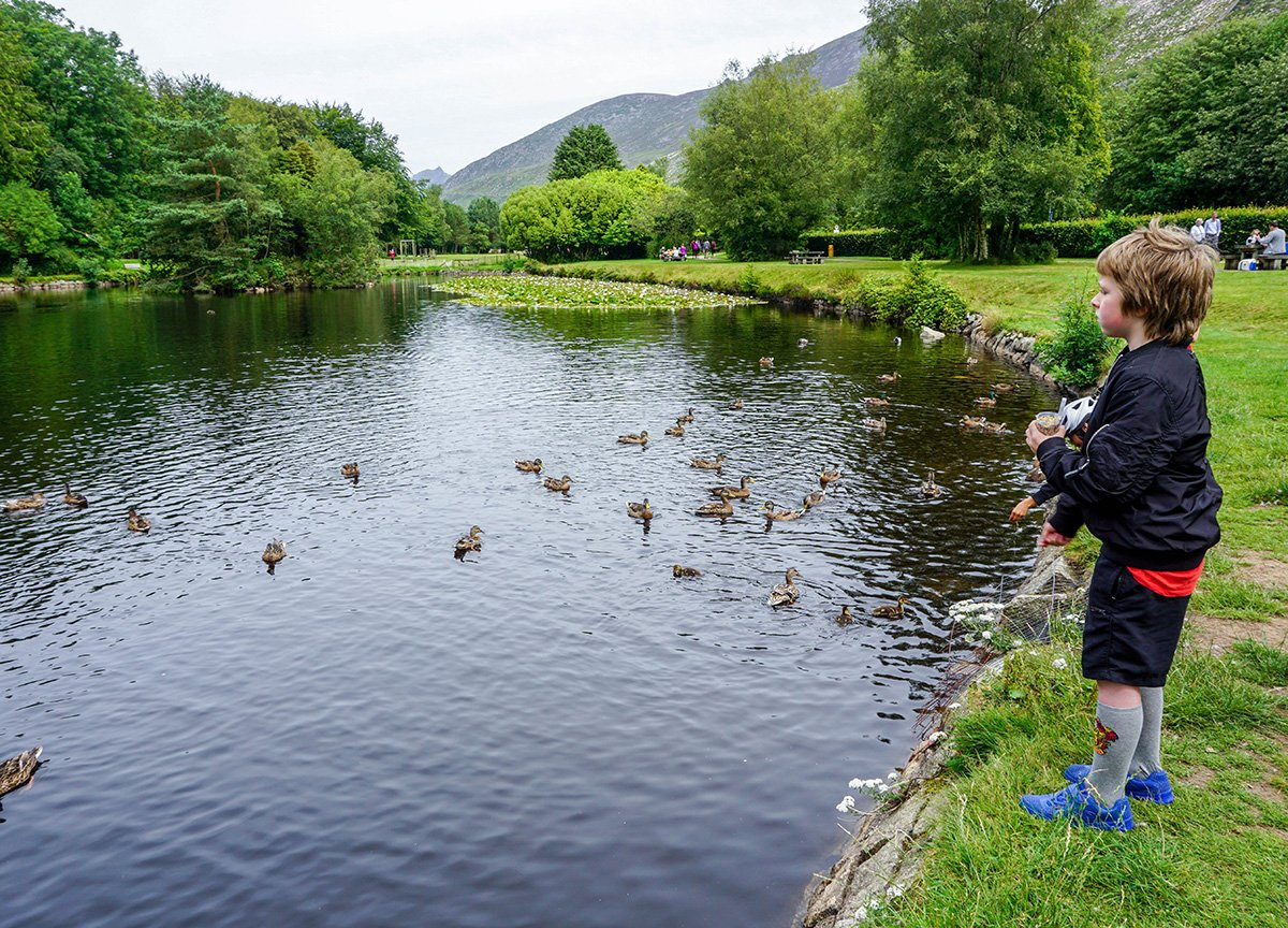 Duck Pond at Silent Valley to Ben Crom Reservoir Mourne Mountains