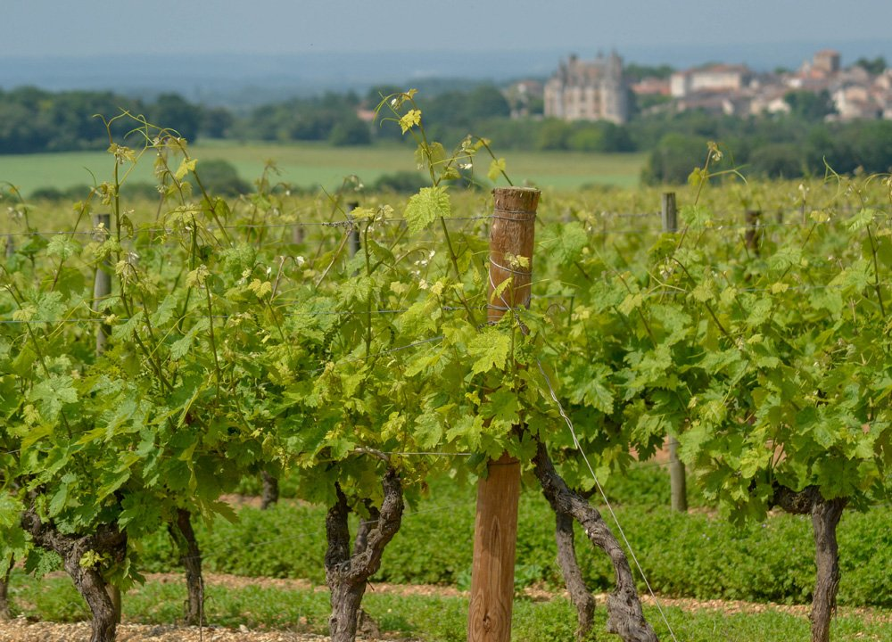 Cognac Region, Road Trip in Southern France and Borders
