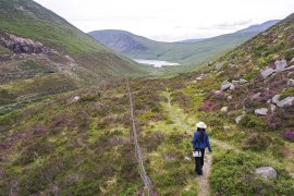 Walking Wild from Ben Crom Reservoir to Silent Valley on the Mourne Mountains