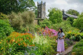 Flowers in Walled Garden at Rowallane Gardens in Ballynahinch Northern Ireland
