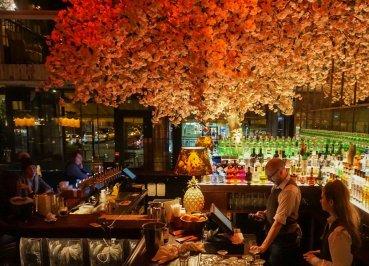 House Belfast Bar Sakura Tree Interior Design Northern Ireland