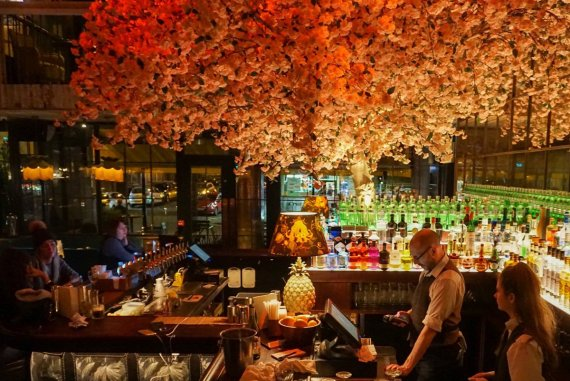 House Belfast Bar Sakura Tree Interior Design Northern Ireland