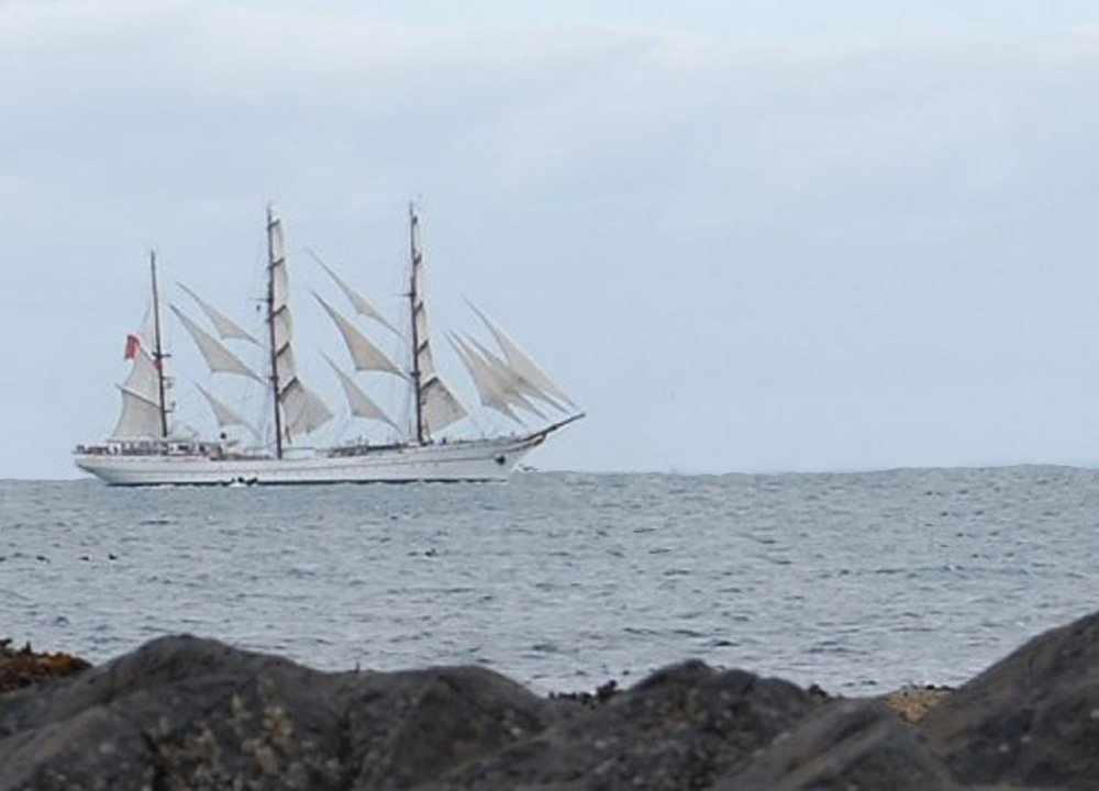 Tall-Ships-in-Bangor-Northern-Ireland from Jenny Watts Cave