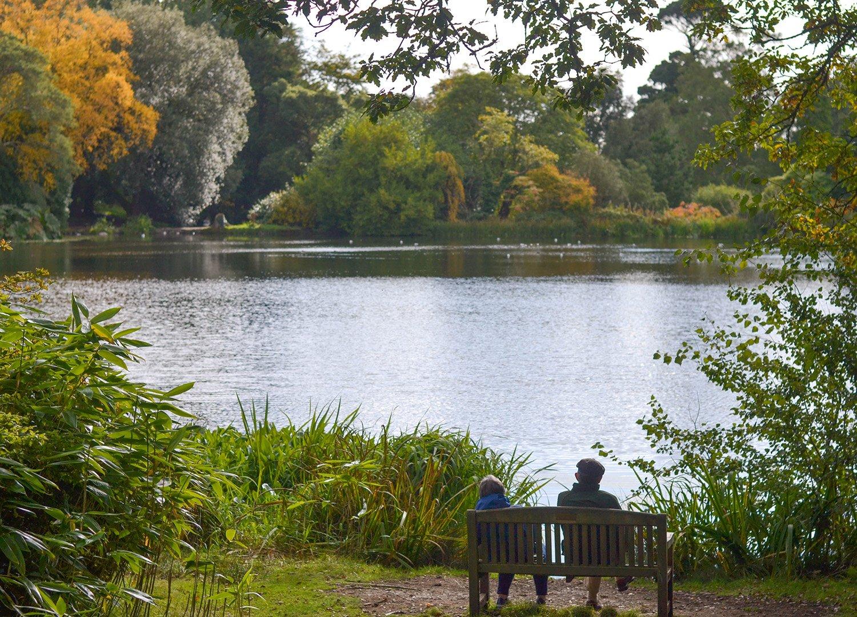 Central Lake Walk Autumn at Mount Stewart National Trust Northern Ireland