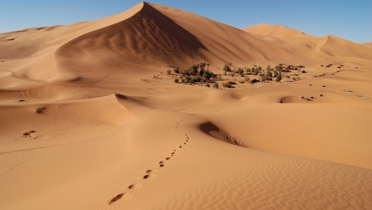 Desert Sands: Moving dunesare a problematic natural hazard for buildersin arid regions. It was a thriving civilisation. Its people spoke and wrote an advanced language. […]