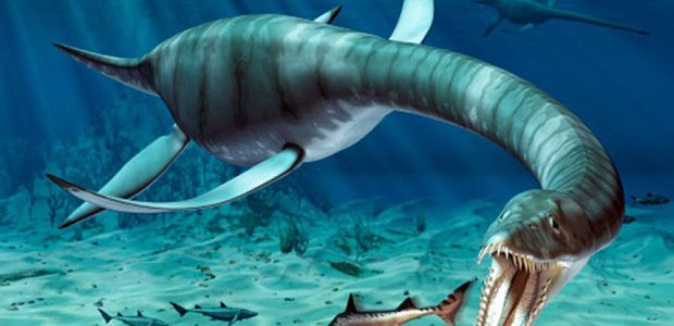 """A """"previously unknown species of dinosaur"""" may have been discovered at a quarry site near Peterborough, Cambridgeshire. The five and half metre long plesiosaur, nicknamed […]"""