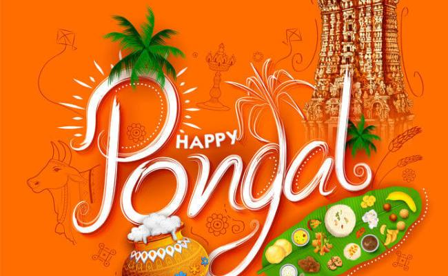 Pongal 2020 Date When Pongal Festival 2020