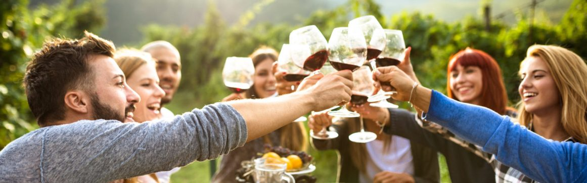 Personal umbrella insurance, group of friends toasting red wine over table outdoors in vineyard with grapevines and mountains as backdrop.