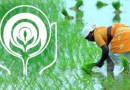 NABARD's Rs 9800 crore assistance to Punjab