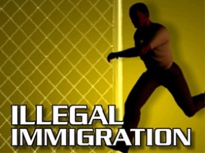illegal immigration and bankruptcy
