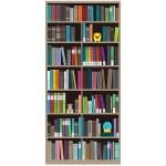 Bookcase 3 Exit Diversion Door Wrap