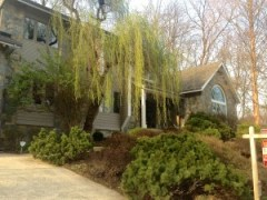 Rock Creek Forest Contemporary for sale
