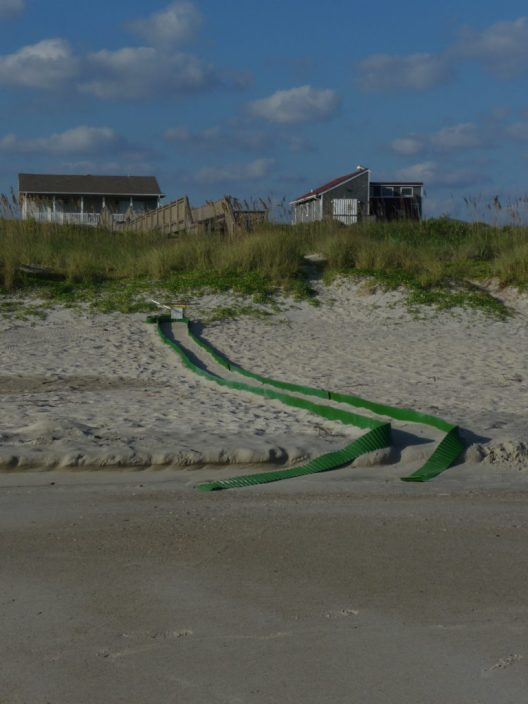 Green paths for newly hatched turtles to make it to the sea, twisted after a storm and heavy surf.