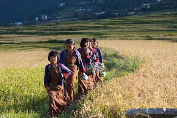 écolières bhoutanaises dans les rizières - blog Bar à Voyages